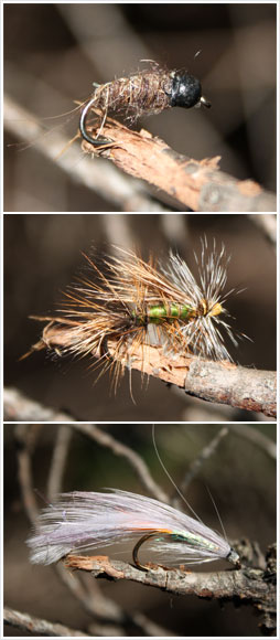 Nymph, dry fly and wet fly
