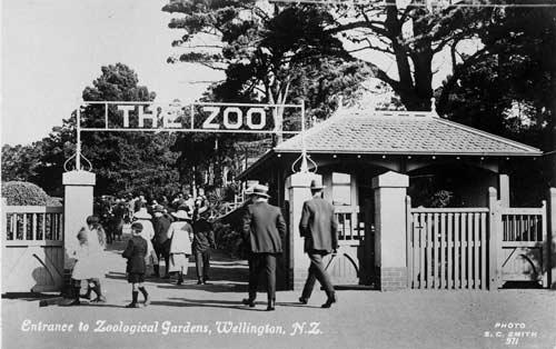 Wellington Zoo postcard