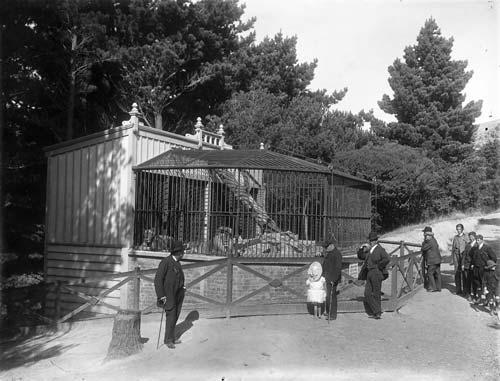 Lion cage, around 1910