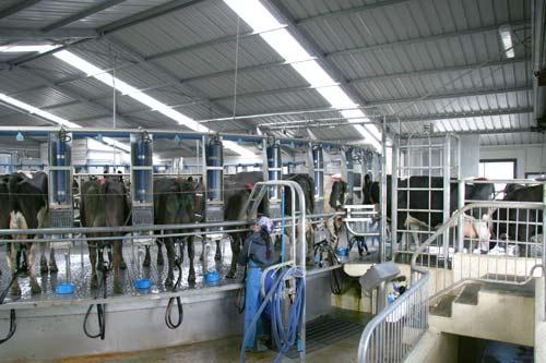 Rotary Milking Shed Farm Buildings Te Ara Encyclopedia