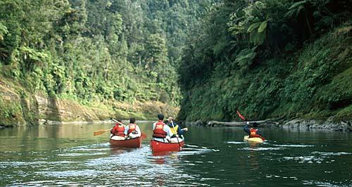 Canoes on the Whanganui River