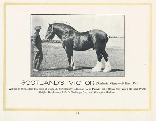 Scotland's Victor