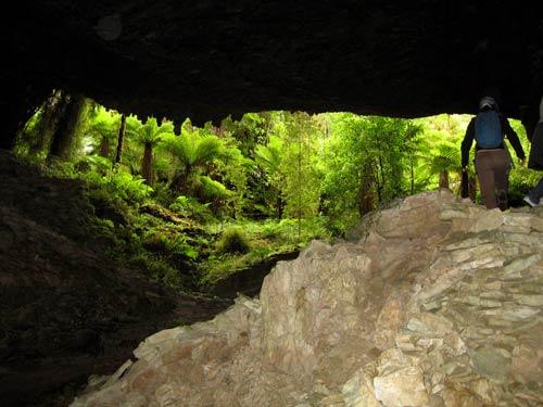 Ōpārara caves