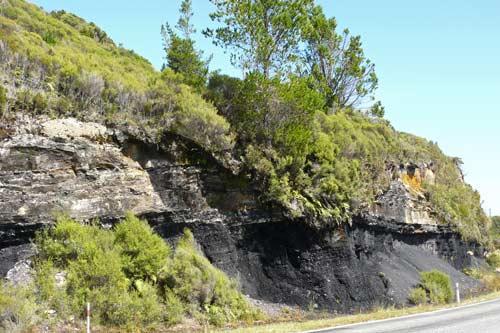 Roadside coal