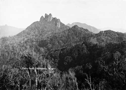 Motutere (Castle Rock)