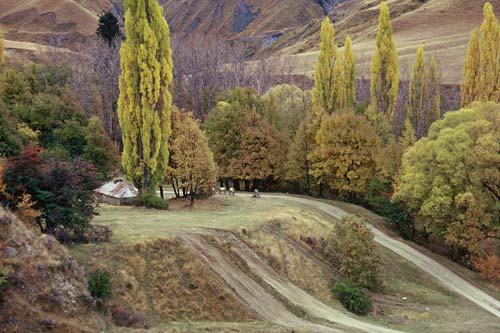 Autumn, Macetown, Central Otago