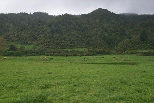 The pā of Tūhoe-pōtiki