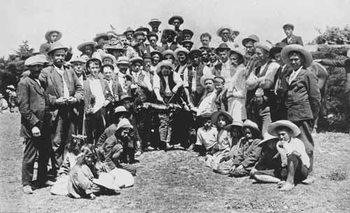 Dalmatians and Māori at Houhora