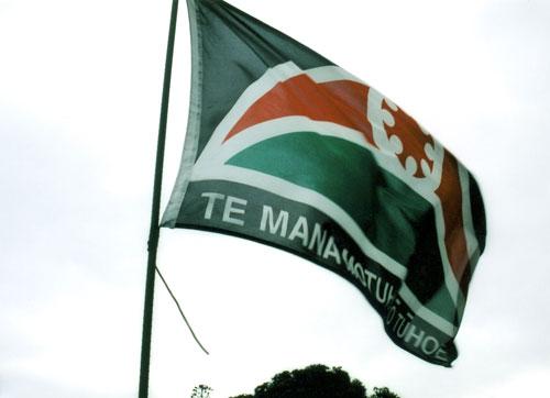 Te Mana Motuhake o Tūhoe flag