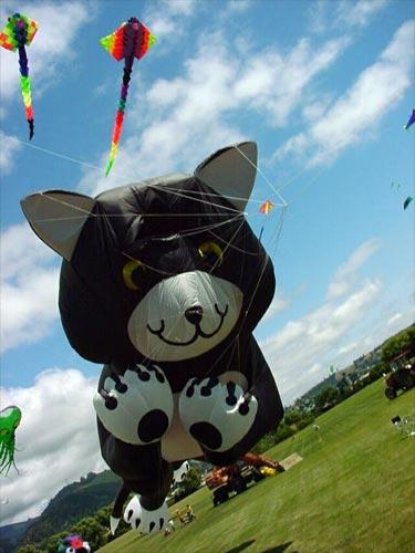 Soft kites