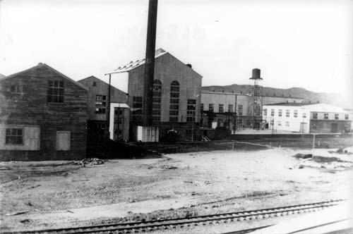 Whakatāne timber mill