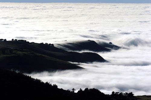 Fog, Otago coast