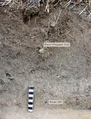 Plaggen soil k hatu m ori use of stone te ara for Soil encyclopedia