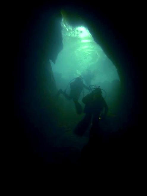 Cave diving at Riwaka