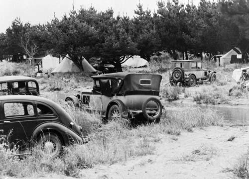 Foxton motor camp
