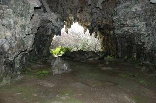 Maniapoto's cave