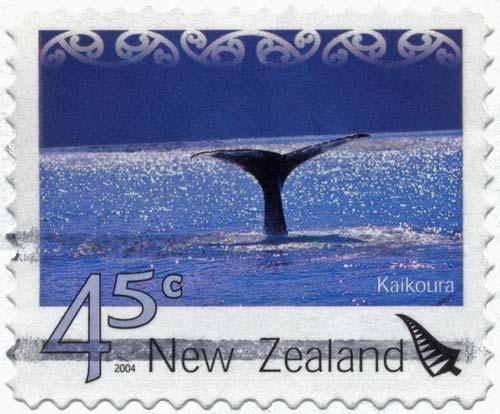 Hiku o te parāoa (sperm whale)