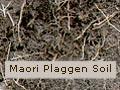 Plaggen soils