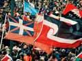 Tino rangatiratanga flag: one among many