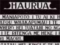Te Puna o te Roimata: te kōwhatu i Haurua