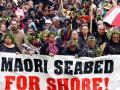 Ngā rōpū tautohetohe – Māori protest movements
