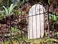Lyell cemetery, 2008