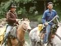 Horse riders in Te Urewera